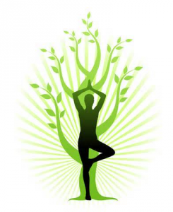 Image of a Dru Yoga pose.